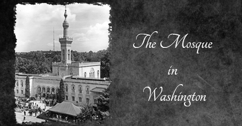 mosque in washington slider