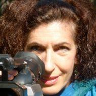 Anisa Mehdi